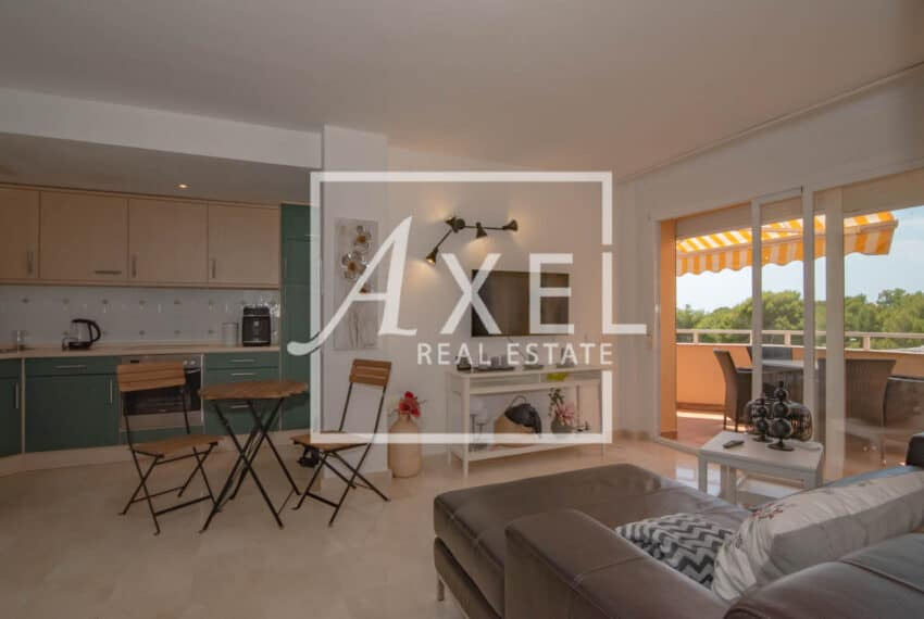 RAW_3968axel-realestate