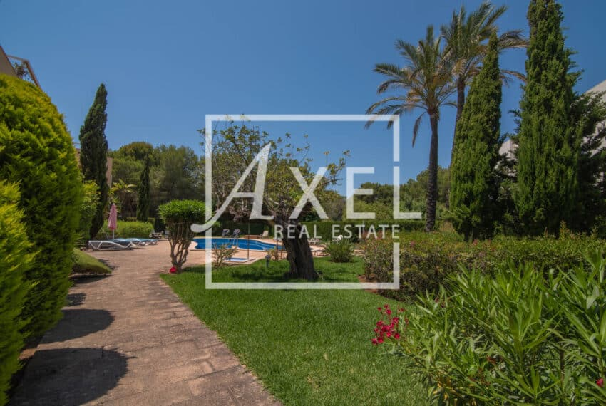 RAW_3978axel-realestate