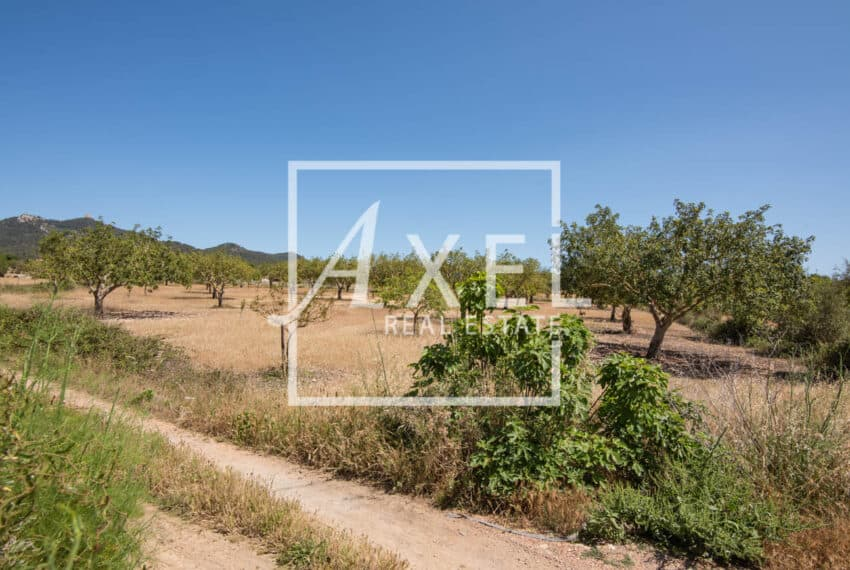 RAW_3921axel-realestate