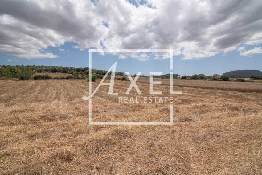 RAW_3981axel-realestate