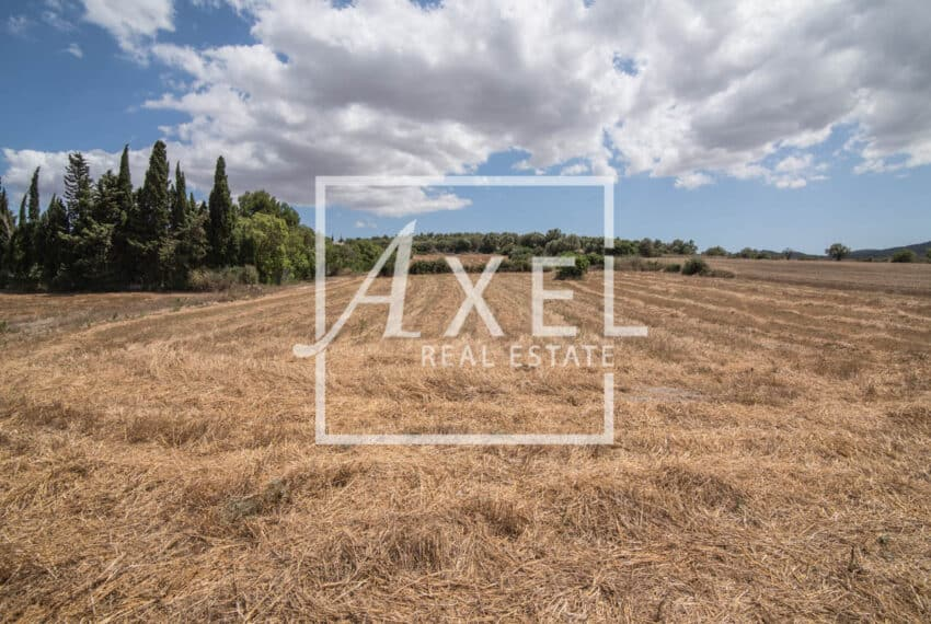 RAW_3983axel-realestate