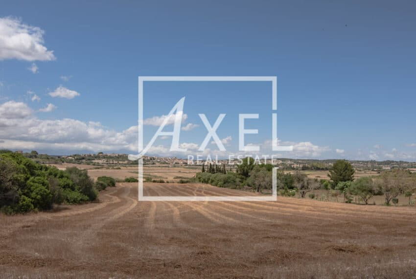 RAW_3990axel-realestate