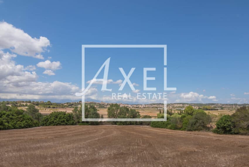 RAW_3993axel-realestate