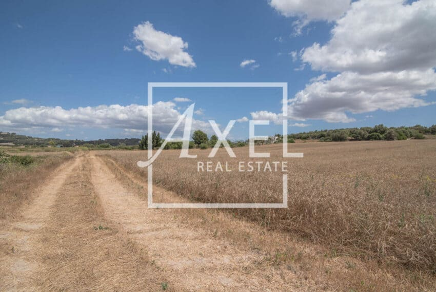 RAW_3994axel-realestate