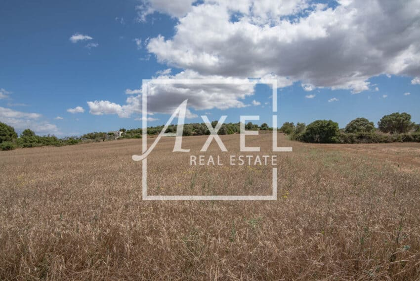 RAW_3995axel-realestate