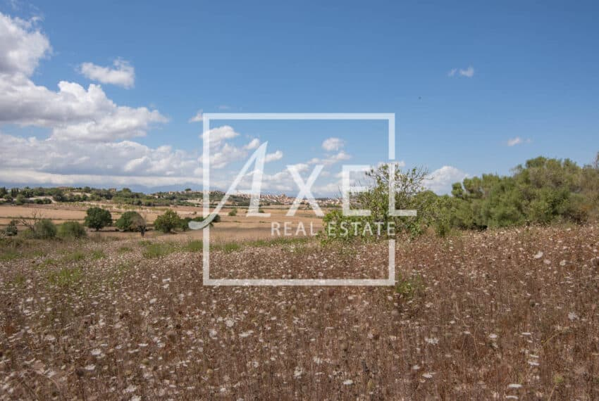 RAW_3999axel-realestate